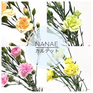 nanae%e3%82%ab%e3%83%ab%e3%83%86%e3%83%83%e3%83%88